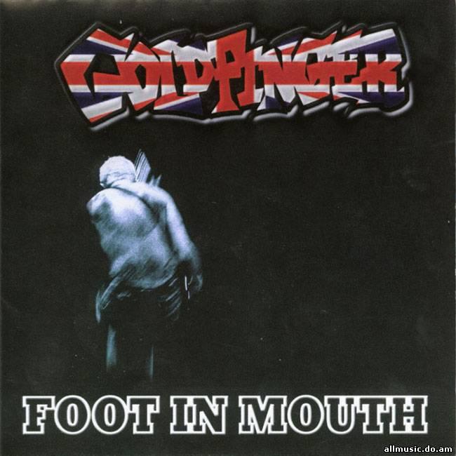 goldfinger discography 1995 2008 8 2010 allmusic